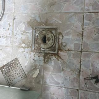 욕실바닥청소전